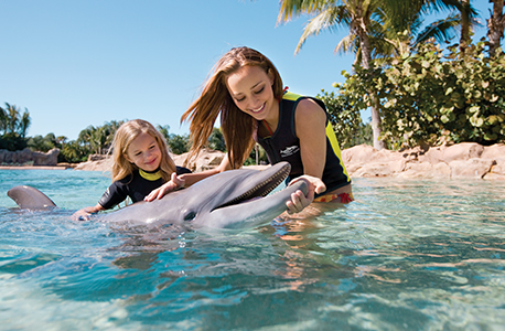 Child and adult petting a dolphin