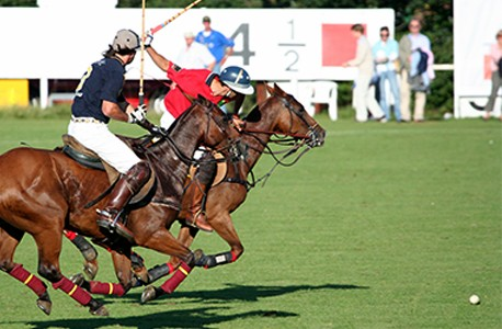 Two polo players on their horses